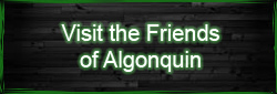 Visit the Friends of Algonquin Park